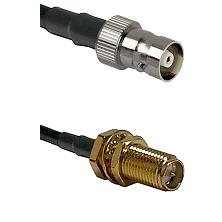 C Female on LMR100 to SMA Reverse Polarity Female Bulkhead Cable Assembly