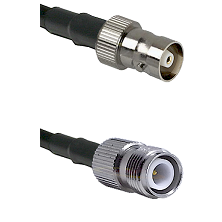 C Female on LMR100 to TNC Reverse Polarity Female Cable Assembly