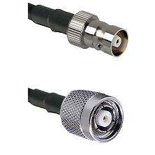 C Female on LMR100 to TNC Reverse Polarity Male Cable Assembly