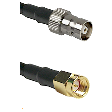 C Female on LMR100 to SSMA Male Cable Assembly
