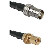 C Female on LMR100 to SSMC Female Bulkhead Cable Assembly