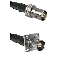 C Female on LMR200 UltraFlex to C 4 Hole Female Cable Assembly