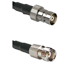 C Female Connector On LMR-240UF UltraFlex To TNC Female Connector Cable Assembly