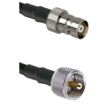 C Female Connector On LMR-240UF UltraFlex To UHF Male Connector Cable Assembly