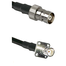 C Female on RG142 to BNC 4 Hole Female Cable Assembly
