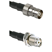 C Female on RG142 to Mini-UHF Female Cable Assembly