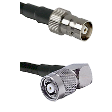 C Female on RG142 to TNC Reverse Polarity Right Angle Male Cable Assembly