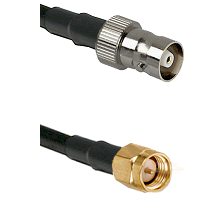 C Female on RG142 to SMA Reverse Thread Male Cable Assembly