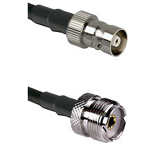 C Female on RG142 to UHF Female Cable Assembly