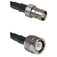 C Female on RG188 to C Male Cable Assembly