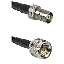 C Female on RG214 to Mini-UHF Male Cable Assembly