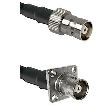 C Female on RG400u to C 4 Hole Female Cable Assembly