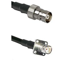 C Female on RG58C/U to BNC 4 Hole Female Cable Assembly
