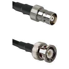 C Female on RG58C/U to BNC Male Cable Assembly