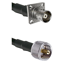 C 4 Hole Female Connector On LMR-240UF UltraFlex To UHF Male Connector Cable Assembly