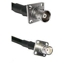 C 4 Hole Female on RG142 to BNC 4 Hole Female Cable Assembly