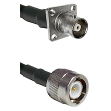 C 4 Hole Female on RG142 to C Male Cable Assembly