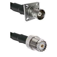 C 4 Hole Female on RG142 to Mini-UHF Female Cable Assembly