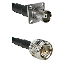 C 4 Hole Female on RG142 to Mini-UHF Male Cable Assembly