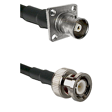 C 4 Hole Female on RG400 to BNC Male Cable Assembly