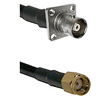 C 4 Hole Female on RG400 to SMA Reverse Polarity Male Cable Assembly