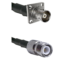 C 4 Hole Female on RG400 to TNC Reverse Polarity Female Cable Assembly