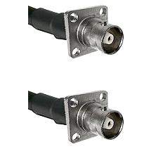 C 4 Hole Female on RG58C/U to C 4 Hole Female Cable Assembly