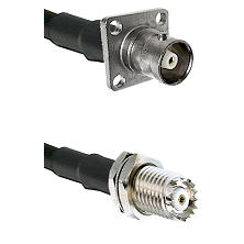 C 4 Hole Female on RG58C/U to Mini-UHF Female Cable Assembly