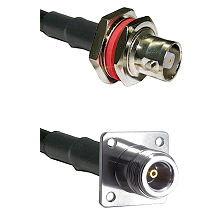 C Female Bulkhead on LMR-195-UF UltraFlex to N 4 Hole Female Cable Assembly