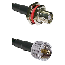C Female Bulkhead on LMR-195-UF UltraFlex to UHF Male Cable Assembly