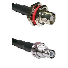 C Female Bulkhead on RG58C/U to BNC Reverse Polarity Female Bulkhead Cable Assembly