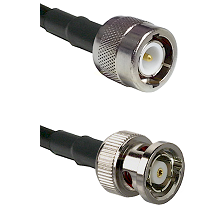 C Male on LMR100 to BNC Reverse Polarity Male Cable Assembly
