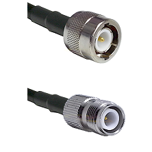 C Male on LMR100 to TNC Reverse Polarity Female Cable Assembly