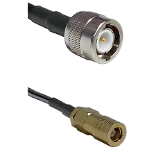 C Male on LMR100 to SLB Female Cable Assembly