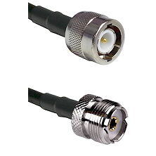 C Male Connector On LMR-240UF UltraFlex To UHF Female Connector Cable Assembly