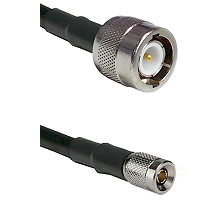 C Male on RG142 to 10/23 Male Cable Assembly