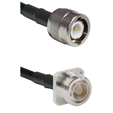 C Male on RG142 to 7/16 4 Hole Female Cable Assembly