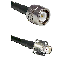 C Male on RG142 to BNC 4 Hole Female Cable Assembly