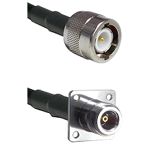 C Male on RG142 to N 4 Hole Female Cable Assembly