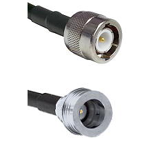 C Male on RG188 to QN Male Cable Assembly