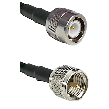 C Male on RG214 to Mini-UHF Male Cable Assembly