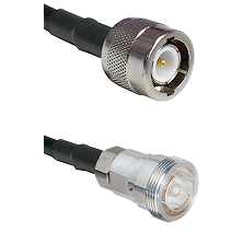C Male on RG58C/U to 7/16 Din Female Cable Assembly