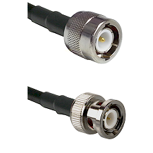 C Male on RG58C/U to BNC Male Cable Assembly