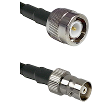 C Male on RG58C/U to C Female Cable Assembly