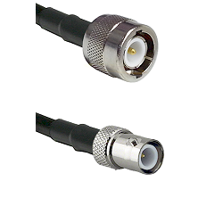 C Male on RG58C/U to BNC Reverse Polarity Female Cable Assembly