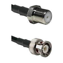 F Female Connector On LMR-240UF UltraFlex To BNC Male Connector Cable Assembly