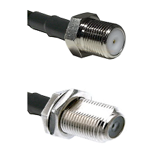 F Female Connector On LMR-240UF UltraFlex To F Female Bulkhead Connector Cable Assembly