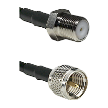 F Female Connector On LMR-240UF UltraFlex To Mini-UHF Male Connector Cable Assembly