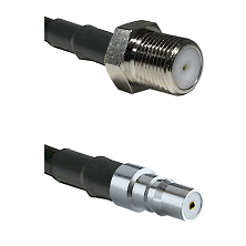 F Female Connector On LMR-240UF UltraFlex To QMA Female Connector Cable Assembly