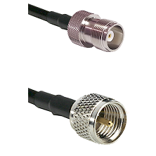 HN Female on RG214 to Mini-UHF Male Cable Assembly